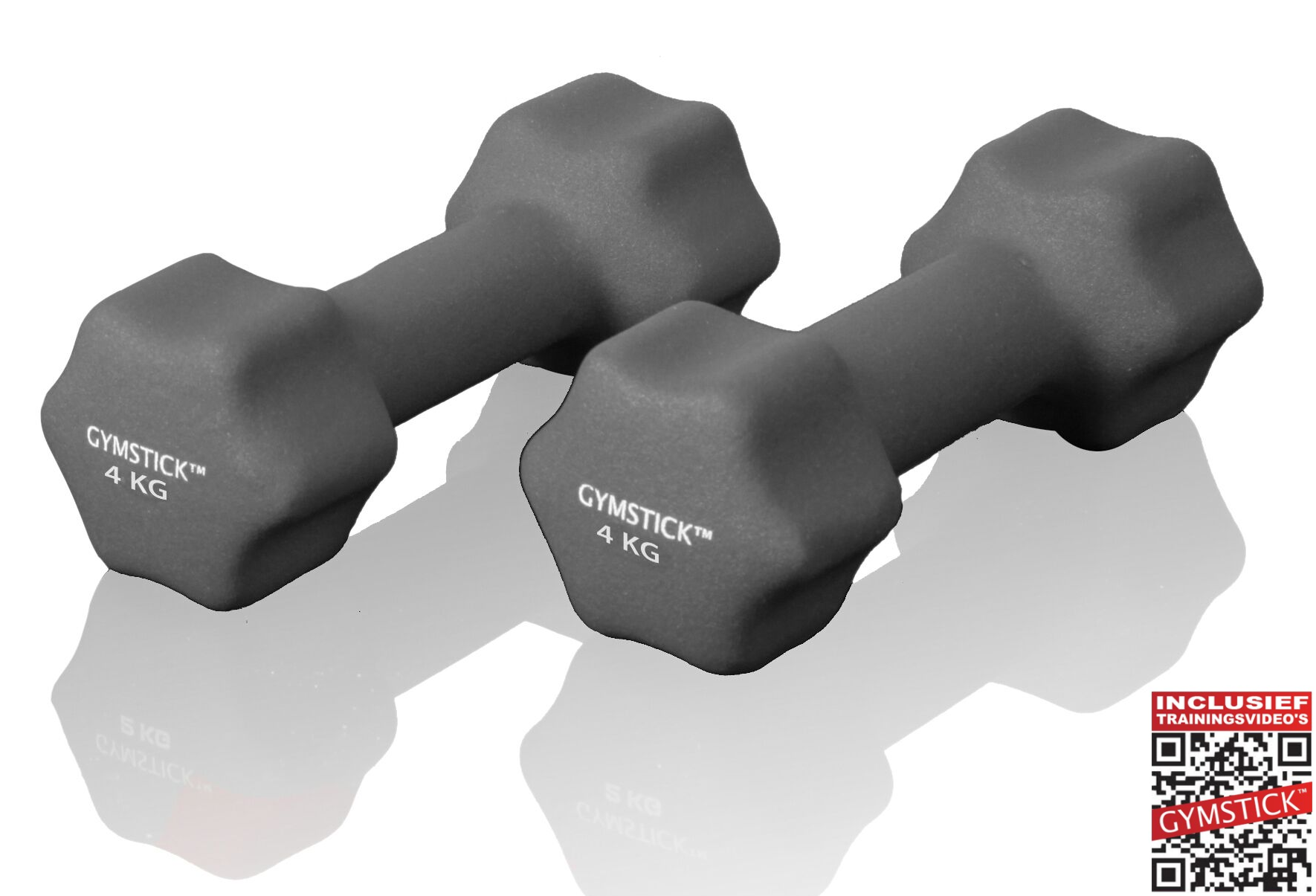 Gymstick dumbbell set (6 kg) + workout DVD