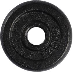 VirtuFit Gietijzeren Schijf 30 mm - 1.25 kg