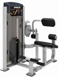 Precor Back Extension
