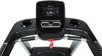 Flow Fitness Runner DTM2500  loopband display.jpg