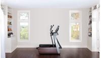 Life Fitness FS4 crosstrainer 14