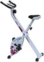 Weslo S Folding Bike-2