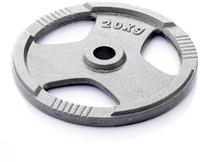 Gietijzer schijf 20 kg (50 mm)