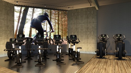 Life Fitness Platinum Explore Lifecycle Hometrainer - Gratis montage-3