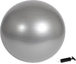 VirtuFit Anti-Burst Fitnessbal Gymbal Grijs 55 cm met Pomp - Verpakking beschadigd